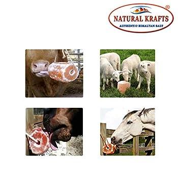 Naturel Krafts ® Naturel Himalaya Cristal de Roche Pierre de sel pour Chevaux de bovins Animaux | 1 pièce 2 KG | 89 minéraux Essentiels | Sain et délicieux