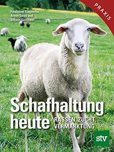 Schafhaltung heute: Rassen, Zucht, Vermarktung