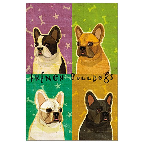 Tree-Free Greetings ECOnotes Blank Note Cards, Matching Envelopes, Blank Stationary Card Set, 4' x 6', French Bulldog Pop Art, Pack of 12 (FS56338)