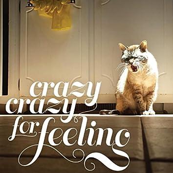 Crazy Crazy for Feeling
