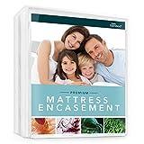Zen Bamboo Mattress Encasement - Best Lab Tested Premium Waterproof, Hypoallergenic, Cool & Breathable Rayon Derived from Bamboo Mattress Encasement and Cover - Queen