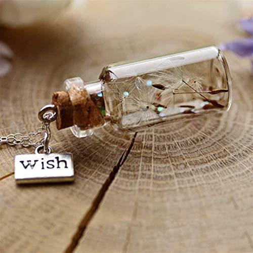 Makluce Motivational gifts, 2pcs Dandelion Wish Pendant Necklace Fashion Creative Dandelion Glass Wishing Drift Bottle Pendant Women Necklace (Color : A)