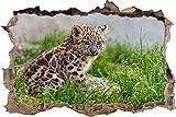 Pixxprint 3D_WD_S1804_62x42 niedlicher junger Leopard Wanddurchbruch 3D Wandtattoo, Vinyl, bunt, 62 x 42 x 0,02 cm