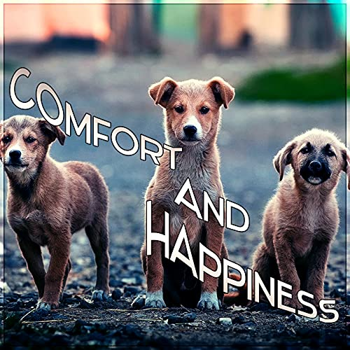 Comfort and Happiness - Instrumental Mellow Music and Calming Down Nature Sounds to Relax Your Dog & Cat When They Are Alone at Home, Soft Melodies for Puppies & Kittens That Will Keep Them Company