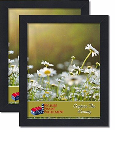 16 By 20-inch Picture Frame 2-piece Set, Smooth Finish, 1.25 Inch Wide, Black Pictureframefactoryoutlet (16x20 Set of Two)