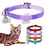 BERRY Breakaway - Collares para Gato con Campana – Etiquetas de identificación para Mascotas con Placa de Nombre – Collar Personalizado de Nailon para Gatos para Perros pequeños Gatos Gatos