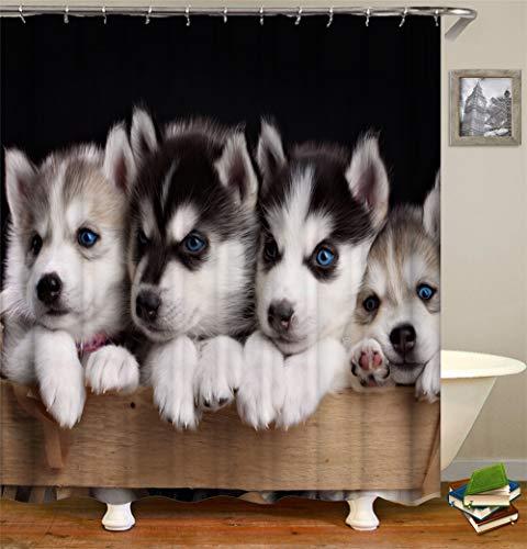 Leuke puppy krukt op het hek. Douchegordijn. 180 x 180 cm. 12 vrije haken. Huisdecoratie. 3D Hd-druk. Eenvoudig te reinigen. Badkameraccessoires.