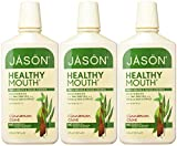 Jason Healthy Mouth Fresh Breath and Tartar Control Mouthwash, Cinnamon Clove, 16 Ounce (Pack of 3)