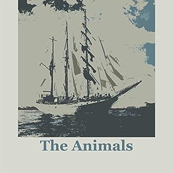 The Animals (US)