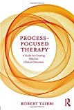 Image of Process-Focused Therapy: A Guide for Creating Effective Clinical Outcomes