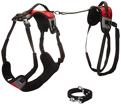Total Pet Health Lift and Go Dog Lead, X-Large, Red
