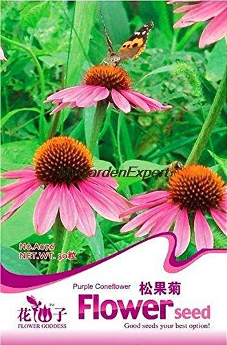 50pcs de vente Hot Seeds échinacée pourpre, Graines de fleurs, Bonsai Graines, bricolage Plante en pot jardin Livraison gratuite