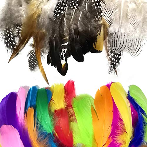 300Pcs Feathers for Craft, Colorful Feathers Crafts Natural Pheasant Feathers Chicken Feathers Assorted Mixed 3-6 Inches for DIY Craft, Jewelry and Wedding Home Party Clothing Decoration, 10 Colors