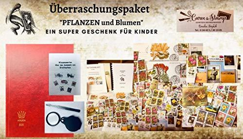 Boemaus500 Überraschungspaket für Kinder, Kindergeburtstag.....Thema Tiere mit Album, Pinzette, 200 Themenmarken Erstagskarten und Briefeniereere