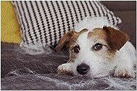 ソファで休むHDジャックラッセルテリア犬9015966(52x38cmの大人のためのプレミアム500ピースジグソーパズル)