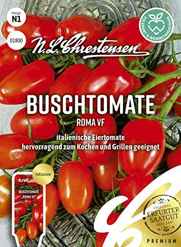 Buschtomate Roma VF, italienische Eiertomate, Samen