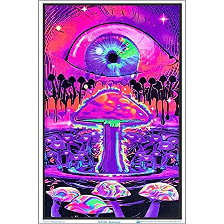 NewBrightBase Mushrooms Trippy Art Fabric Cloth Rolled Wall Poster Print 28 x 24 // 16 x 13 Size:
