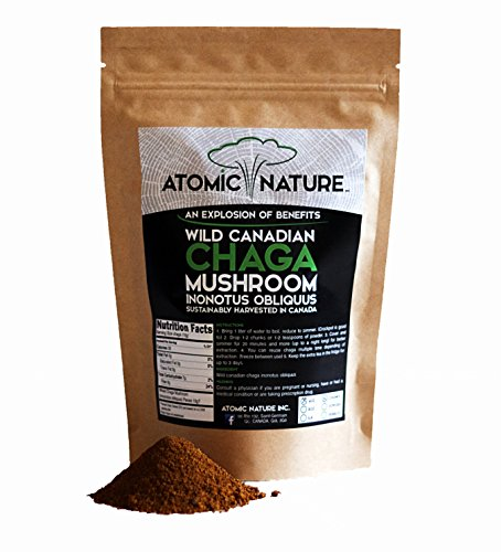 4oz Raw Organic Wild Chaga Mushroom Tea Ground Fine Powder - 100% Natural Hand-Harvested Canadian Forest Chaga Superfood, Healthy Immune System Booster & Antioxidant