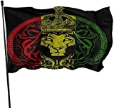 Oaqueen Flagge/Fahne African Flag The Lion of Judah Rasta Rastafari Official Flags Durable House Flag Outdoor Banner Yard Holiday Decorative Flags for College Weekend Sports 2020-3X5 Ft