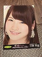公式プロマイド 元AKB48 チームA 川栄李奈 真夏のドームツアー 写真 パンフ購入特典 フォト