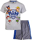 Nickelodeon Paw Patrol Boys T-Shirt Mesh Short Set (Toddler Little Boys) (Paw Patrol/Grey, 4T)