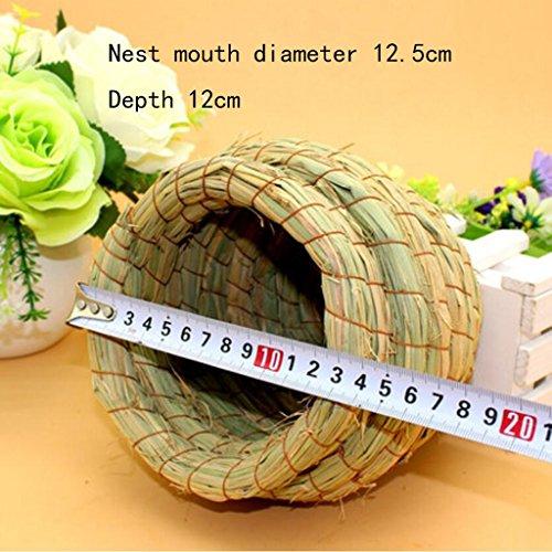 Volière Liuyu · Maison de la Vie La boîte d'élevage de Perroquet de nid d'oiseau de Paille Garde Les Accessoires Chauds de Cage d'oiseau (Size : Large)