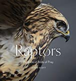 Image of Raptors: Portraits of Birds of Prey (Bird Photography Book)