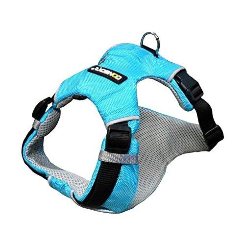 NUMAXES Harnais Sport Coneck'T - M : 69-80cm - Bleu - Pour chien