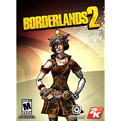 Borderlands 2 gunzerker tips