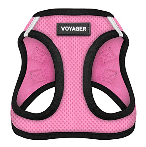 Voyager Step-In Air Dog Harness for Pugs