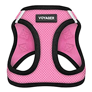 Voyager Step-in Air Dog Harness – All Weather Mesh, Step in Vest Harness for Small and Medium Dogs by Best Pet Supplies, Pink Base, XL (Chest: 21 – 23″) (207-PKB-XL)