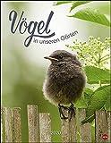 Vögel in unseren Gärten Posterkalender. Wandkalender 2020. Monatskalendarium. Spiralbindung. Format 34 x 44 cm