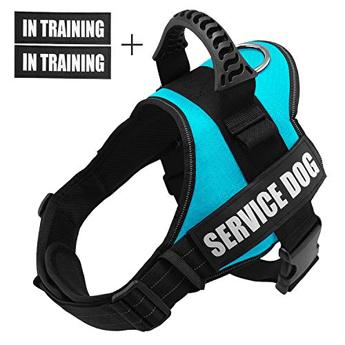 Fairwin Service Vest Dog Harness - Adjustable Nylon with Removable Reflective Patches for Service Dogs Large Medium Small Sizes (S : Chest 20'-25';Neck 16'-20', Blue)