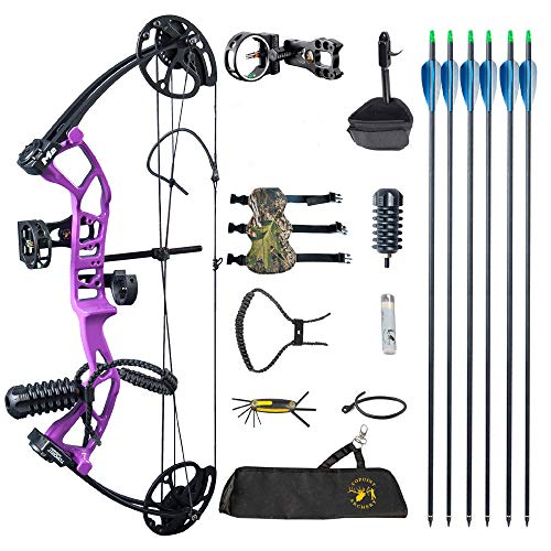 ZSHJGJR Archery Youth Compound Bow and Arrow Set 17'-27' Draw Length 10-40lbs Draw Weight Adjustable 290fps IBO 3-Pin Sight Hunting Compound Bow Kit for Adult Beginners Teens Right Hand (Purple)