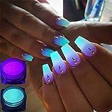 TOOGOO 12 cajas/juego Polvo de fosforo de neon Polvo de brillo de unas Pigmento luminoso del polvo de 12 colores Polvo fluorescente brillo de unas Brillan en la oscuridad