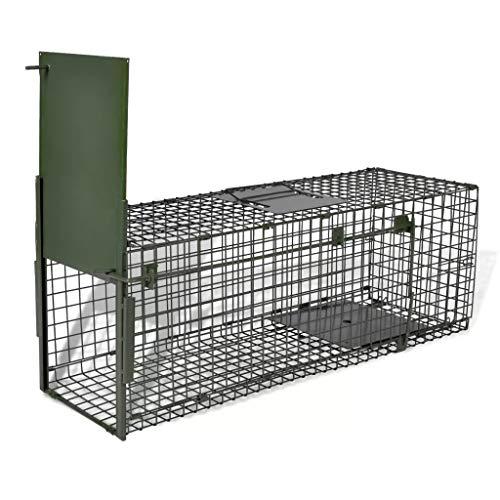 Moorland Trappola a Cassetta per catturare Animali vivi Safe 80 x 25 x 25 cm Gabbia Metallica per lepri, Conigli, Gatti, Volpi
