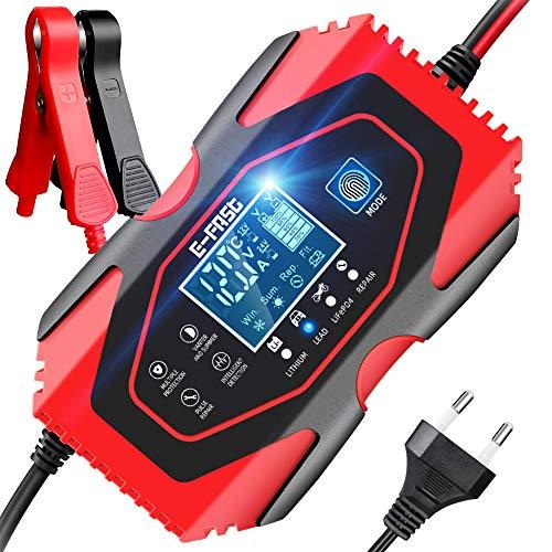 YDBAO Cargador de Batería Coche Mantenimiento Rápido Automático Inteligente 6A 12V/24V con Múltiples Protecciones para Coche Moto ATV RV Barco