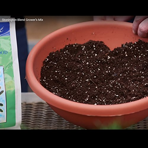 Coast of Maine – Platinum Grower's Mix, Super Soil