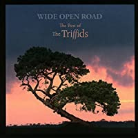 Wide Open Road: the Best of Th