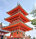 warmwfw 1000 Piezas de Rompecabezas para Adultos y niños Senso Ji Temple Japón Kyoto Landmark Jigsaw Puzzle Toy Set,Regalo deJuegos Familiares75 * 50cm