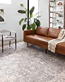 Loloi ll Skye Collection Printed Distressed Vintage Area Rug, 5'-0' x 7'-6', Grey/Apricot