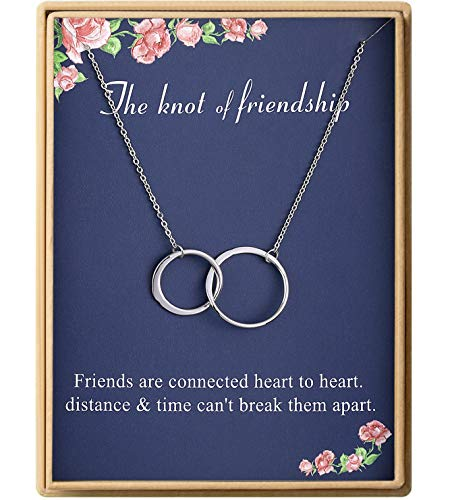 The Knot of Friendship Necklace S925 Sterling Silver Two Interlocking Infinity Double Circles Necklace Friend Jewelry for Women