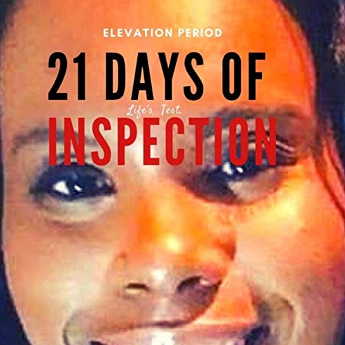 21 Days of Inspection: Elevation Period audiobook cover art