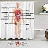 KISSENSU Cortinas con Ganchos,Diagrama Anatomía del Cuerpo Humano Cerebro Esófago Biología Médico Científico,Cortina de Ducha Alfombra de baño Bañera Accesorios Baño Moderno