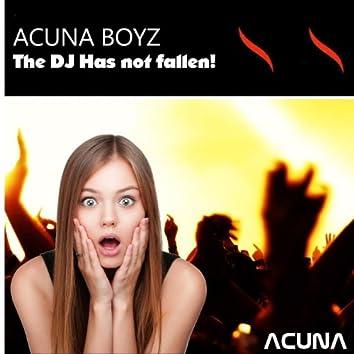 The DJ Has Not Fallen