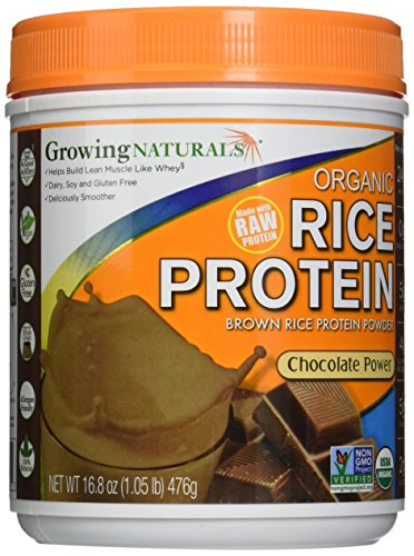 Growing Naturals Rice Protein Chocolate Power (476G) 16.80 Ounces by Growing Naturals