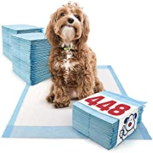 ValuePad Puppy Pads, Medium 23x24 Inch, 448 Count - Economy Training Pads for Dogs, Leak Resistant 5-Layer Design, Perfect for Puppies, Smaller Dogs & Even Litter Boxes