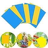 Osuter 40Stück Fliegenfänger Sticker, Gelbtafeln und...