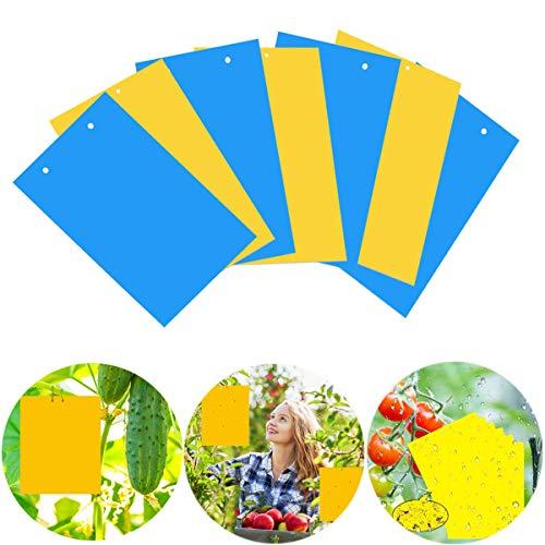 40 Sticker, Gelbtafeln und Blautafeln Fliegenfallen Klebrige Insektenfalle