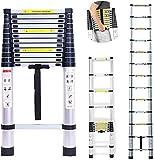 Portable en aluminium d'échelles télescopiques de 16,5 pieds pour bureau à la maison grenier entrepôt garage garage bricolage constructeur multi-usage extensible étapes 5m de hauteur / 150kg capa